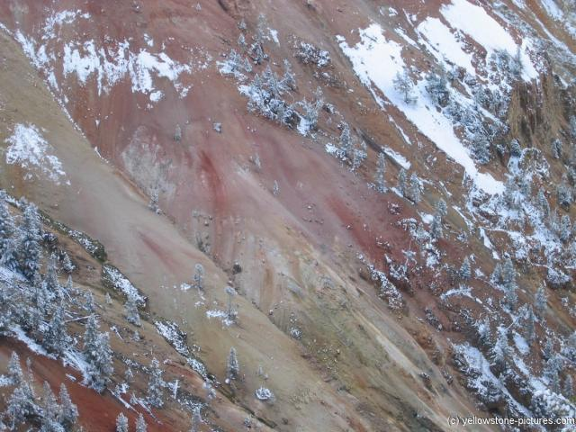 Pink rock color of Yellowstone Canyon.jpg