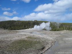 Old Faithful Geyser in Yellowstone.jpg