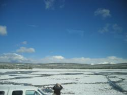 Ice and snow covered pond in Yellowstone.jpg