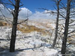 Yellowstone Travertine Cliff and Hot springs Photo.jpg